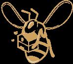 installation de ruche